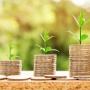 """Artigo de Opinião:  """"A influência da libertação do financiamento nos projetos imobiliários"""""""